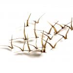 Gedenkobject mat metaal - 'Vogels' HxBxD 117x58x15 cm € 619,- (mogelijkheid loskoppeling 1 vogel)