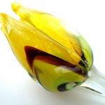 Close up van de gele tulp hiernaast op foto ... handmatig erg mooi uitgevoerd ...